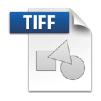 tiff receive critical acclaim - 300×305