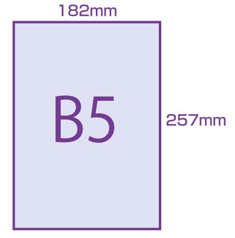 センチ b5 何
